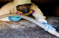 Mold Remediation Vancouver